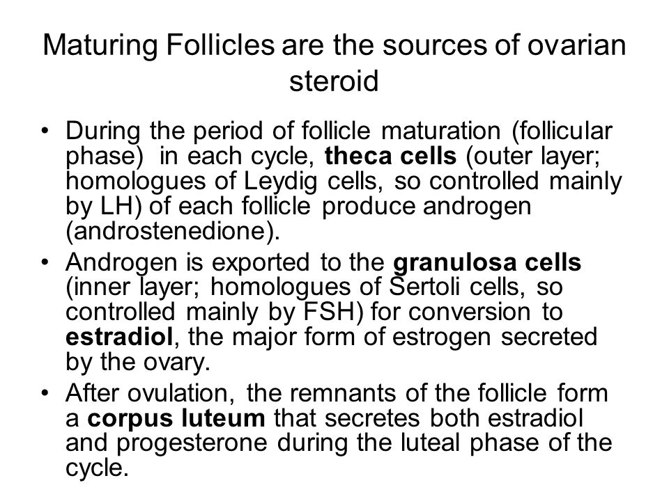 Maturing Follicles are the sources of ovarian steroid