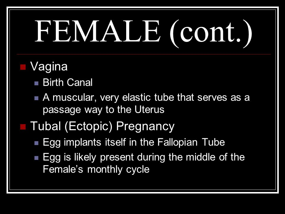 FEMALE (cont.) Vagina Tubal (Ectopic) Pregnancy Birth Canal