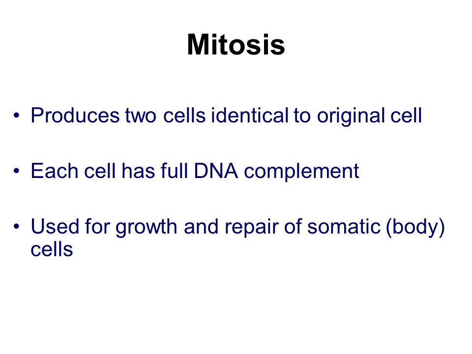 Mitosis Produces two cells identical to original cell
