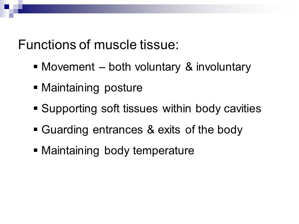 Functions of muscle tissue: