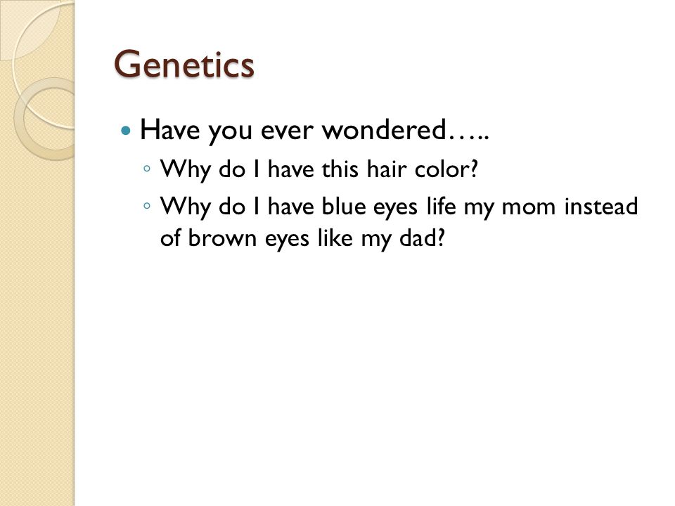 Genetics Have you ever wondered….. Why do I have this hair color