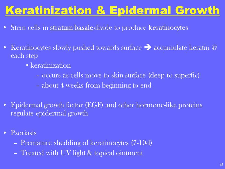 Keratinization & Epidermal Growth