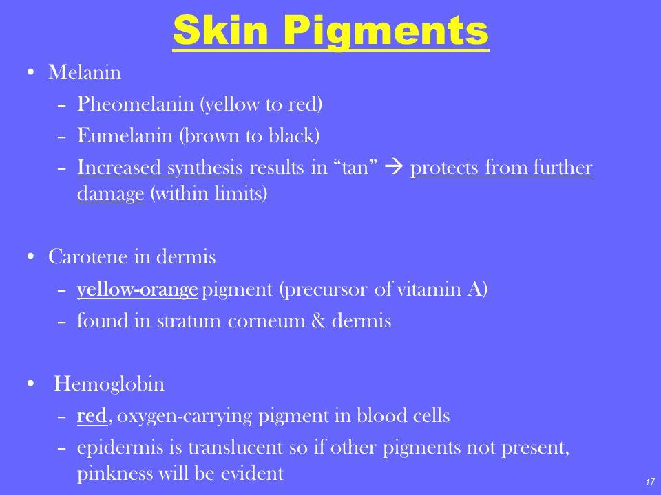 Skin Pigments Melanin Pheomelanin (yellow to red)