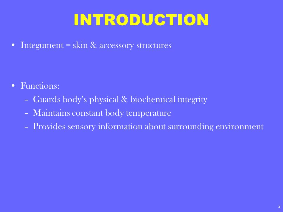 INTRODUCTION Integument = skin & accessory structures Functions: