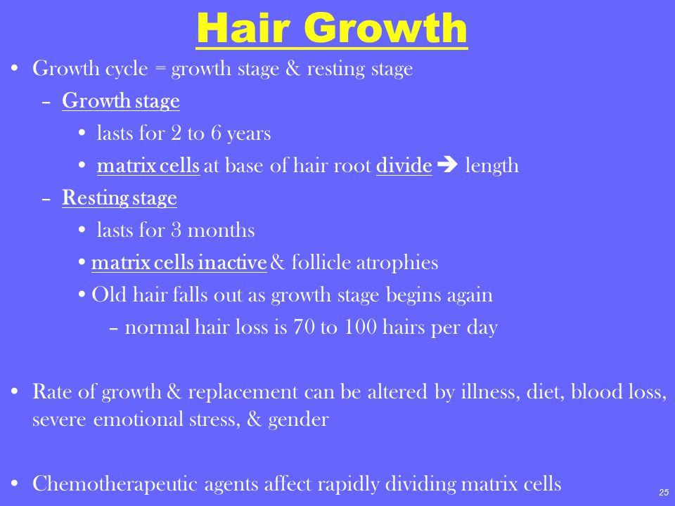 Hair Growth Growth cycle = growth stage & resting stage Growth stage