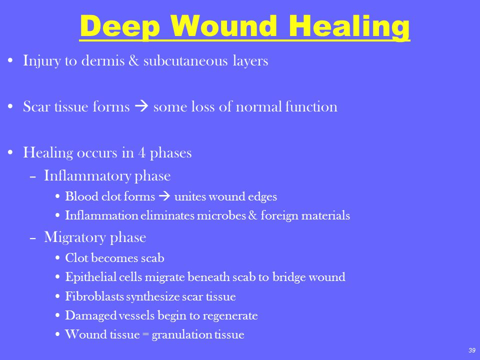 Deep Wound Healing Injury to dermis & subcutaneous layers