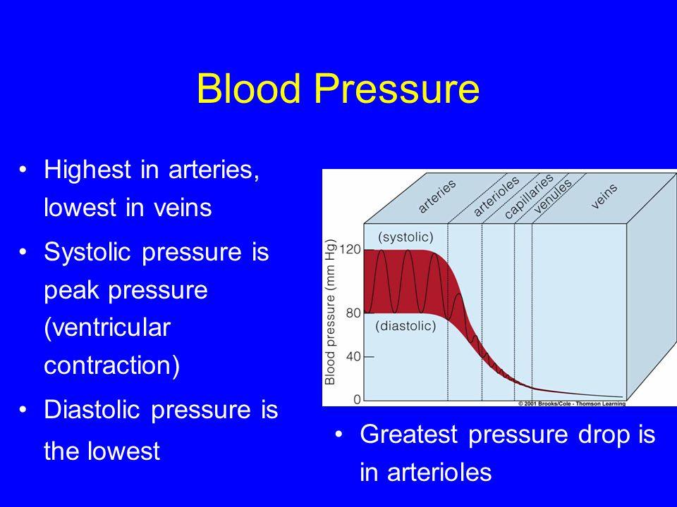 Blood Pressure Highest in arteries, lowest in veins