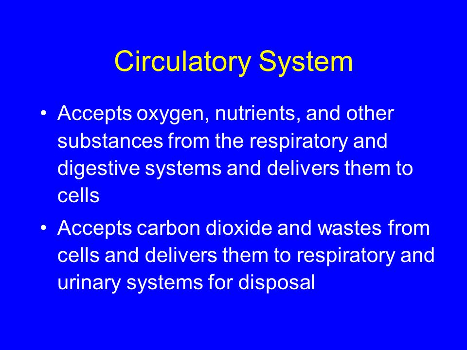 Circulatory System Accepts oxygen, nutrients, and other substances from the respiratory and digestive systems and delivers them to cells.