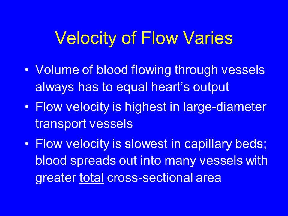 Velocity of Flow Varies