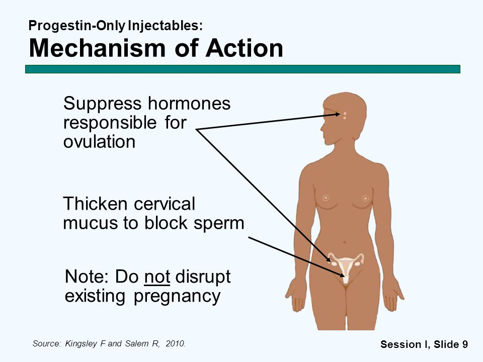 Progestin-Only Injectables: Mechanism of Action