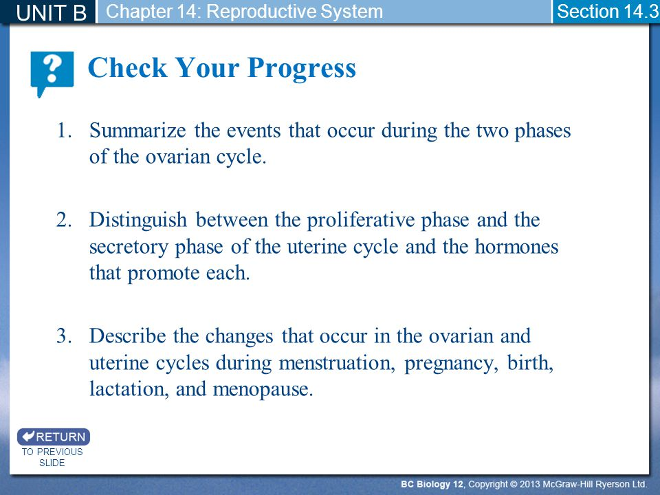 Check Your Progress UNIT B