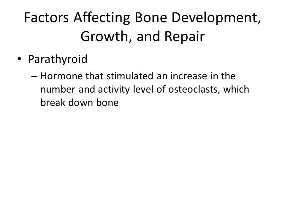 Factors Affecting Bone Development, Growth, and Repair