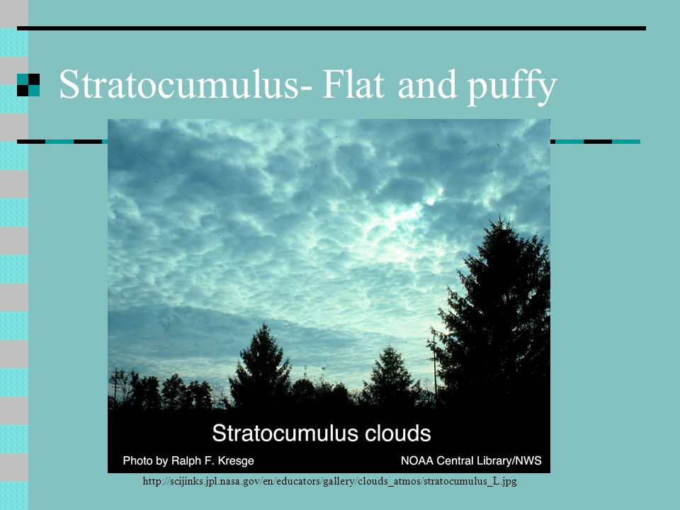 Stratocumulus- Flat and puffy