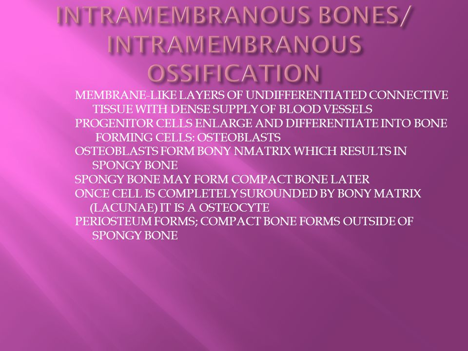 INTRAMEMBRANOUS BONES/ INTRAMEMBRANOUS OSSIFICATION