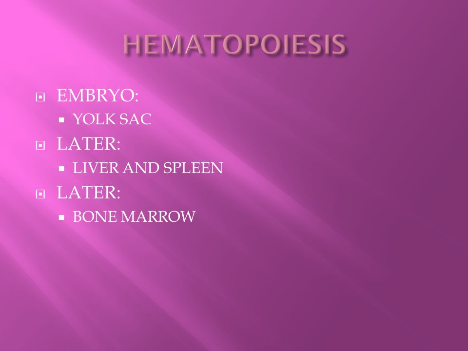 HEMATOPOIESIS EMBRYO: YOLK SAC LATER: LIVER AND SPLEEN BONE MARROW