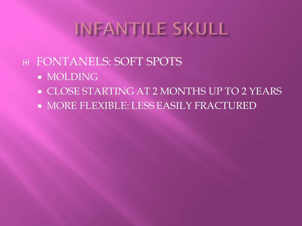 INFANTILE SKULL FONTANELS: SOFT SPOTS MOLDING