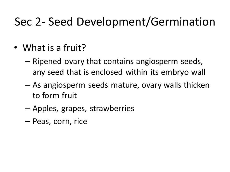 Sec 2- Seed Development/Germination