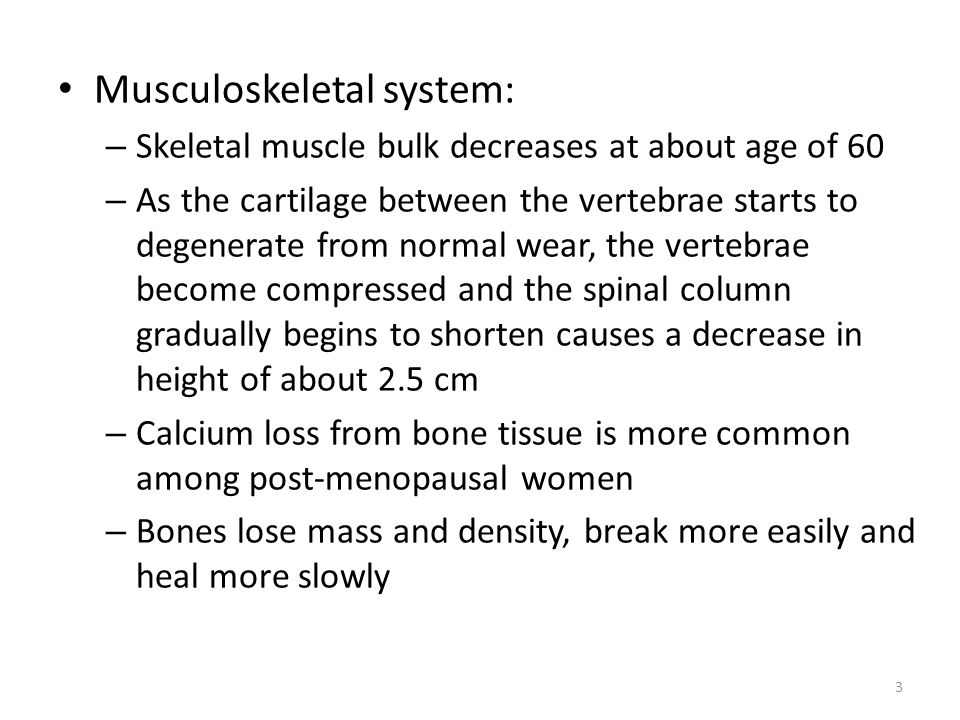 Musculoskeletal system: