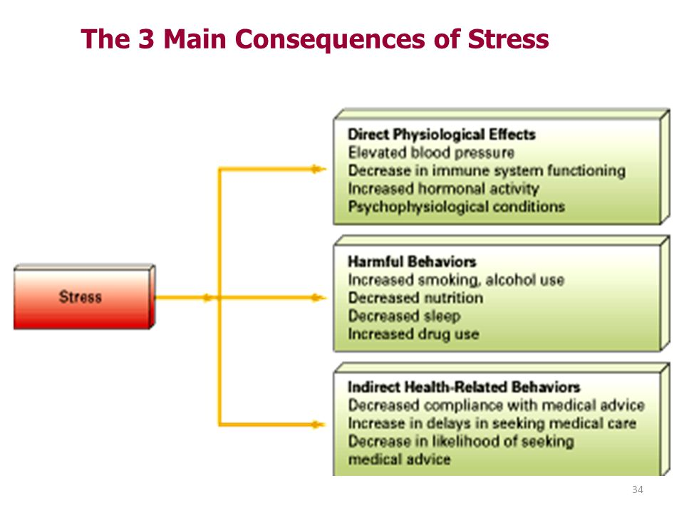 The 3 Main Consequences of Stress