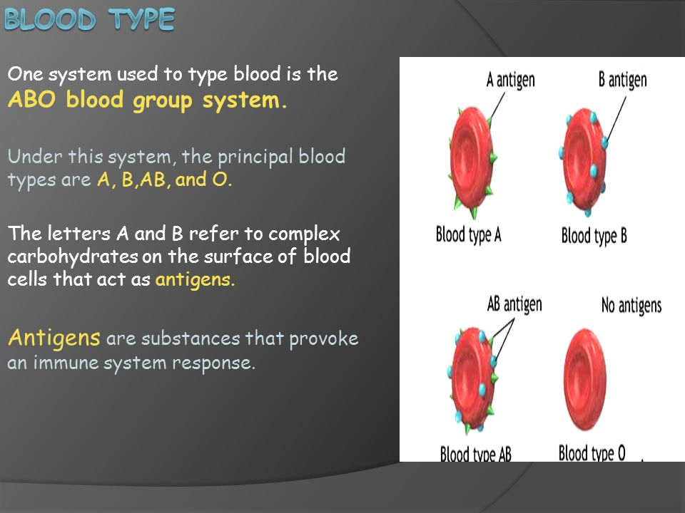 Blood Type One system used to type blood is the ABO blood group system. Under this system, the principal blood types are A, B,AB, and O.
