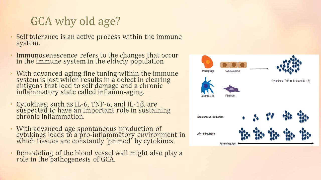 GCA why old age Self tolerance is an active process within the immune system.
