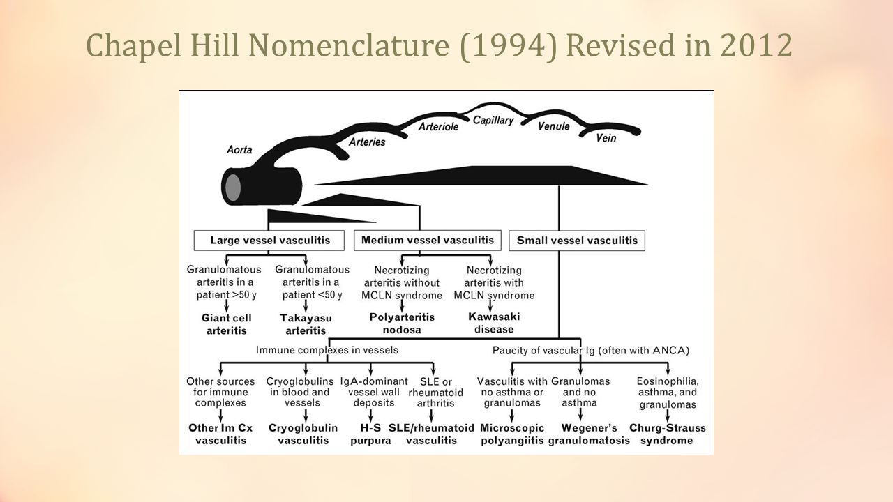 Chapel Hill Nomenclature (1994) Revised in 2012