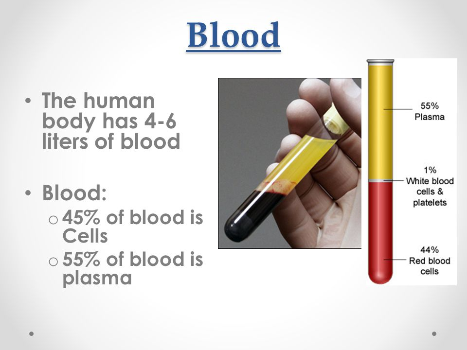 Blood The human body has 4-6 liters of blood Blood: