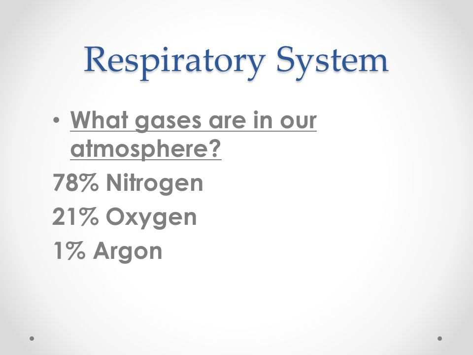 Respiratory System What gases are in our atmosphere 78% Nitrogen