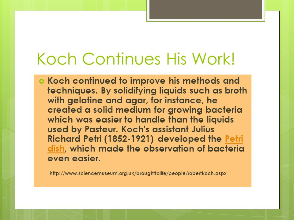 Koch Continues His Work!