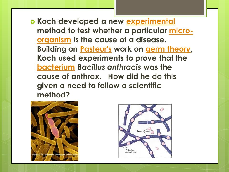 Koch developed a new experimental method to test whether a particular micro-organism is the cause of a disease.
