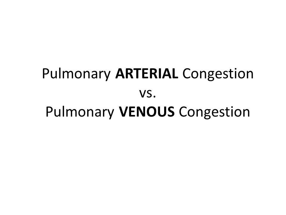 Pulmonary ARTERIAL Congestion vs. Pulmonary VENOUS Congestion