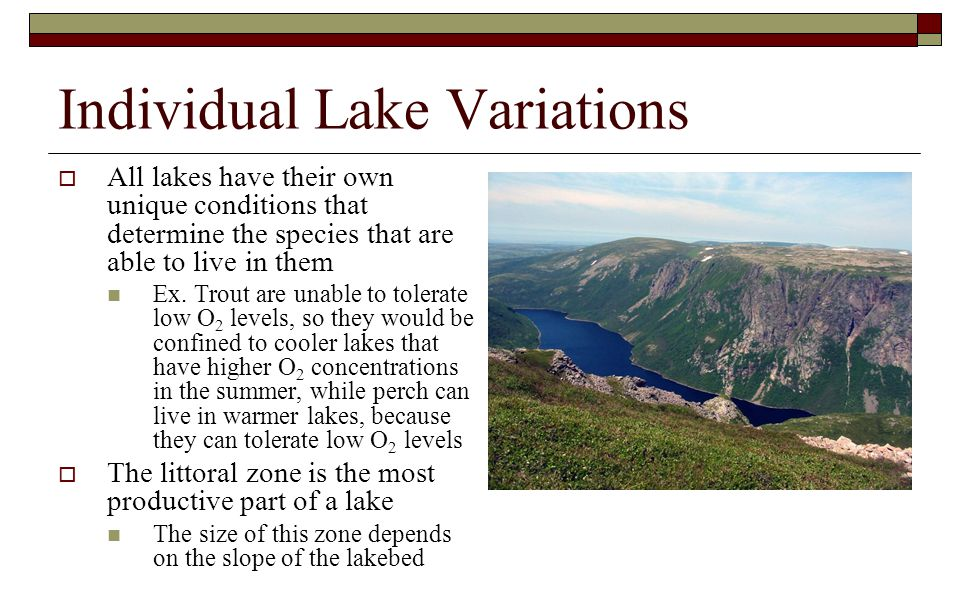 Individual Lake Variations
