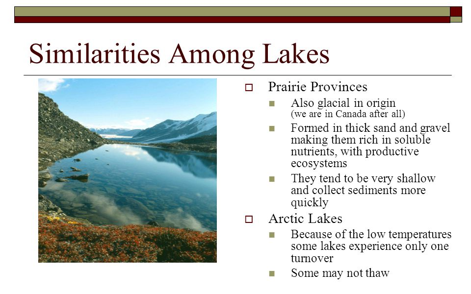 Similarities Among Lakes