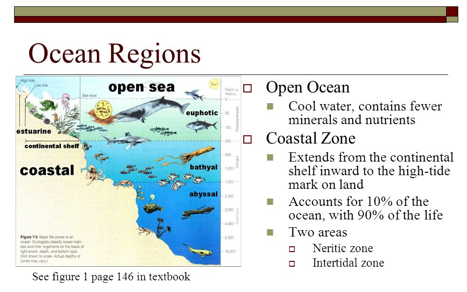 Ocean Regions Open Ocean Coastal Zone