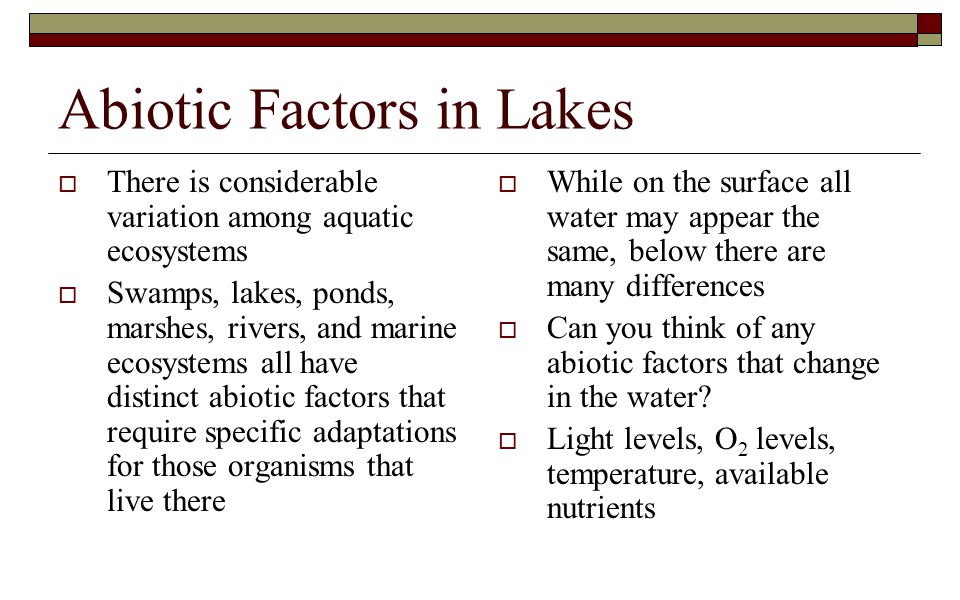 Abiotic Factors in Lakes