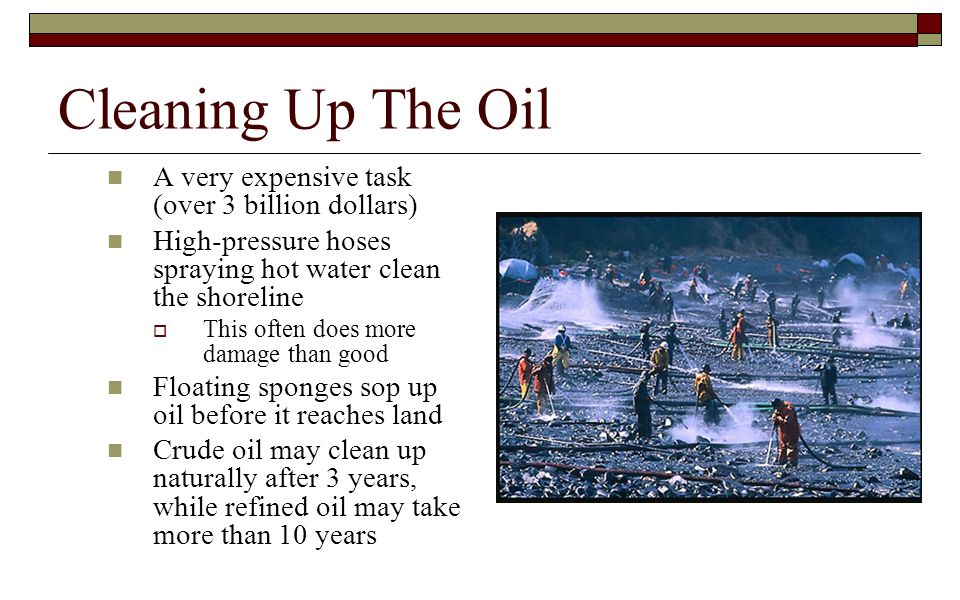 Cleaning Up The Oil A very expensive task (over 3 billion dollars)