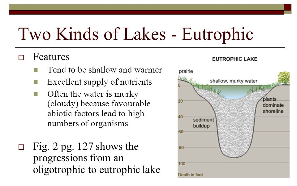 Two Kinds of Lakes - Eutrophic