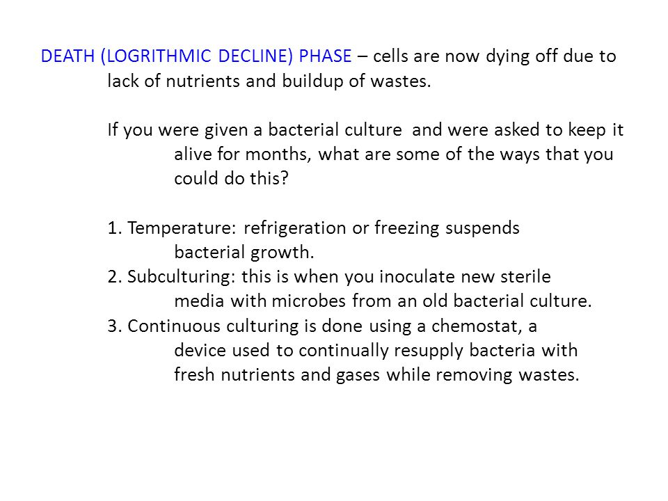 DEATH (LOGRITHMIC DECLINE) PHASE – cells are now dying off due to