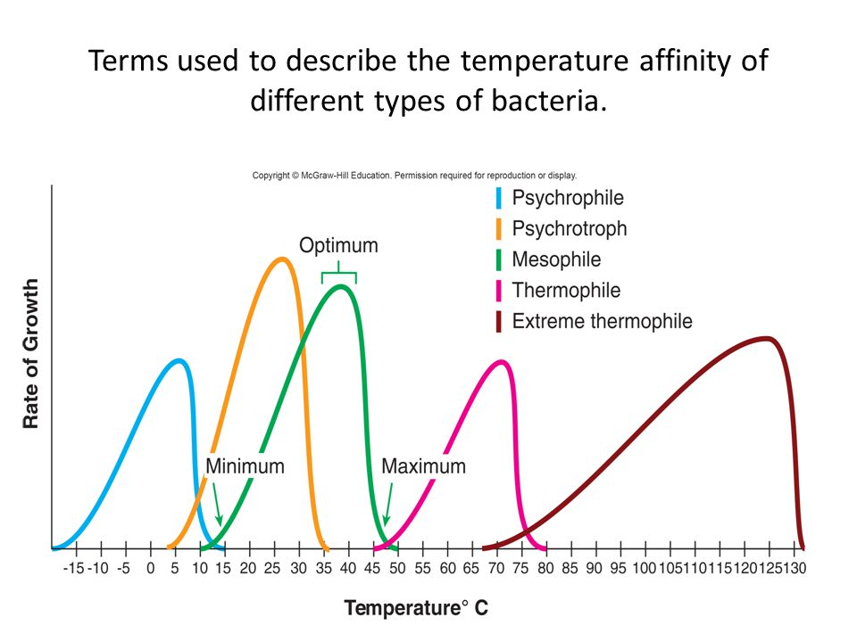 Terms used to describe the temperature affinity of different types of bacteria.
