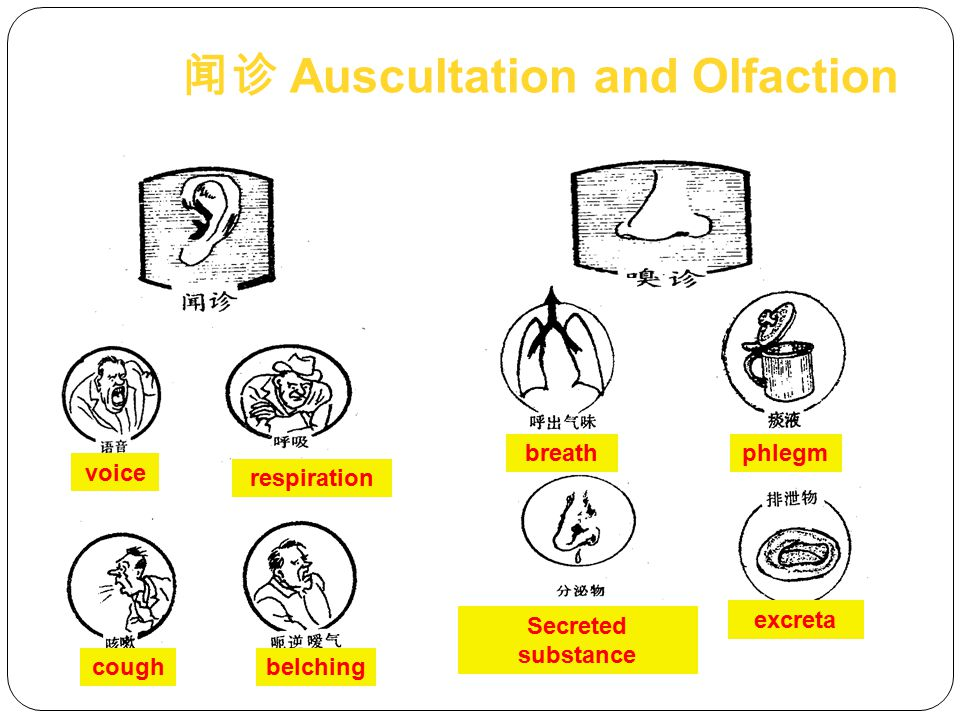 闻诊 Auscultation and Olfaction
