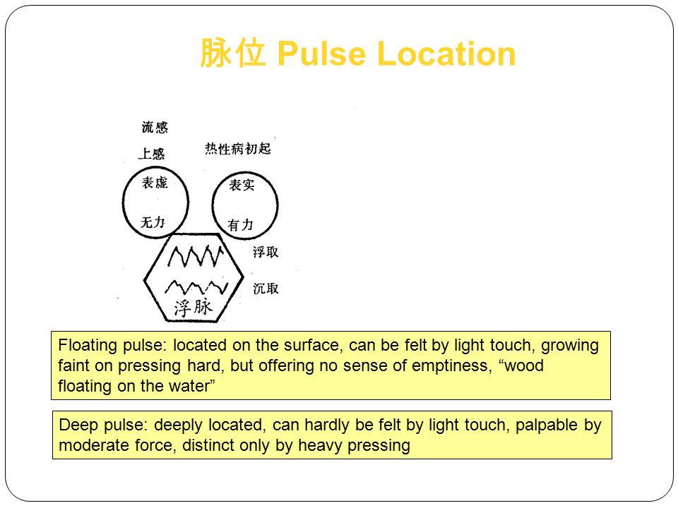 脉位 Pulse Location