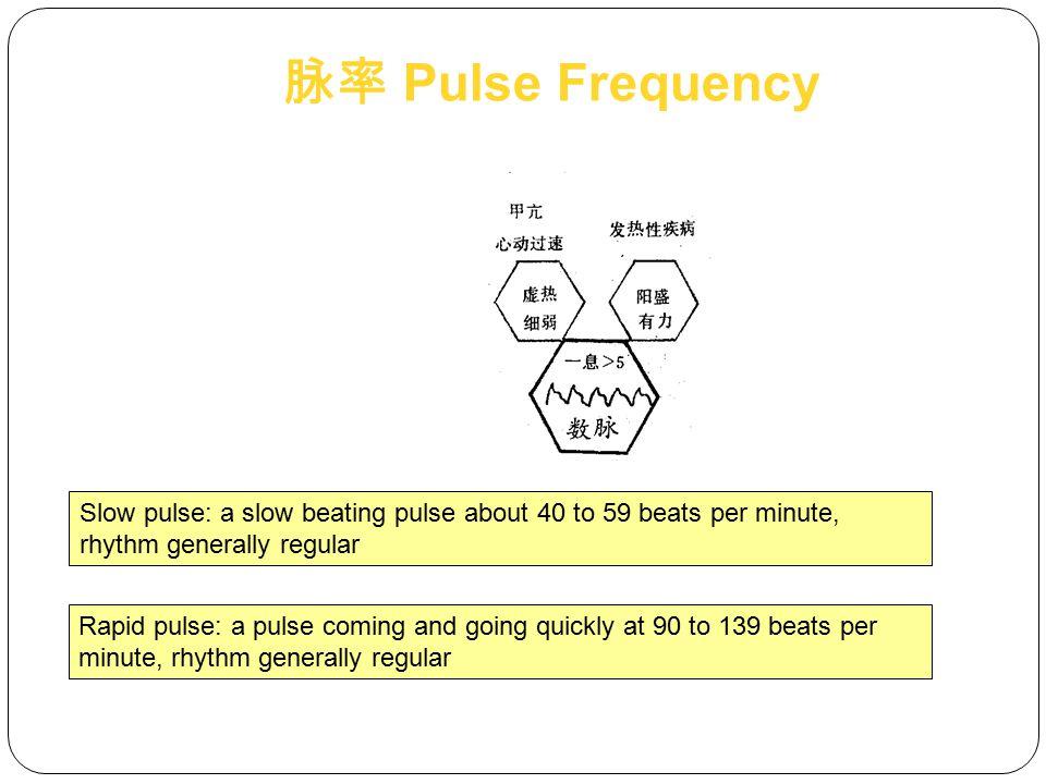 脉率 Pulse Frequency Slow pulse: a slow beating pulse about 40 to 59 beats per minute, rhythm generally regular.