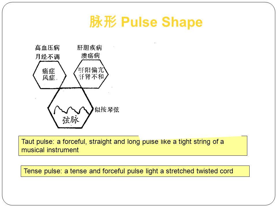 脉形 Pulse Shape Taut pulse: a forceful, straight and long pulse like a tight string of a musical instrument.