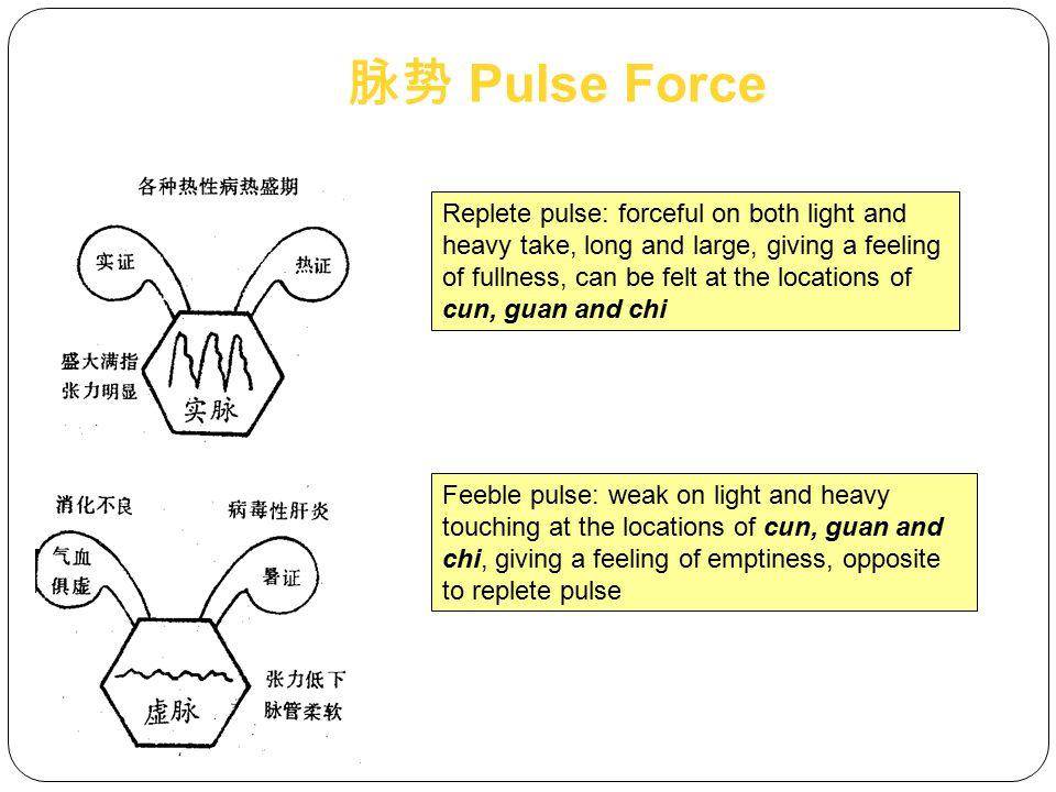脉势 Pulse Force