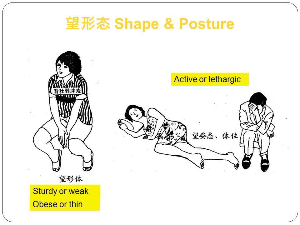 望形态 Shape & Posture Active or lethargic Sturdy or weak Obese or thin