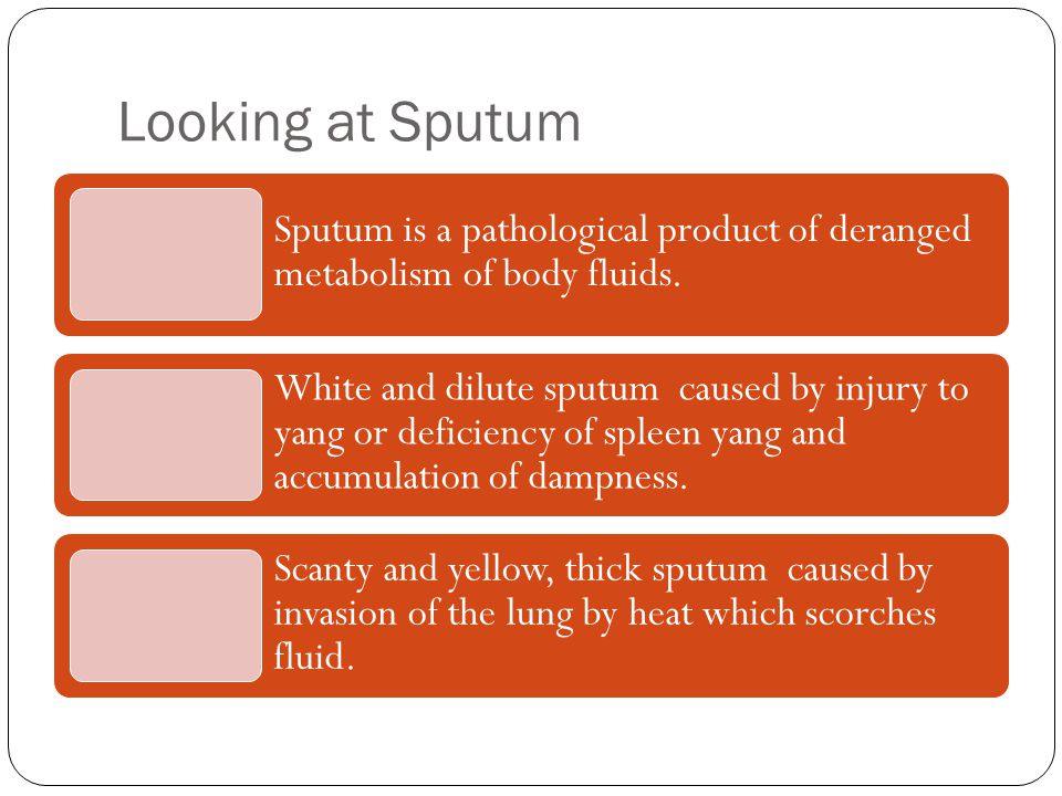 Looking at Sputum Sputum is a pathological product of deranged metabolism of body fluids.