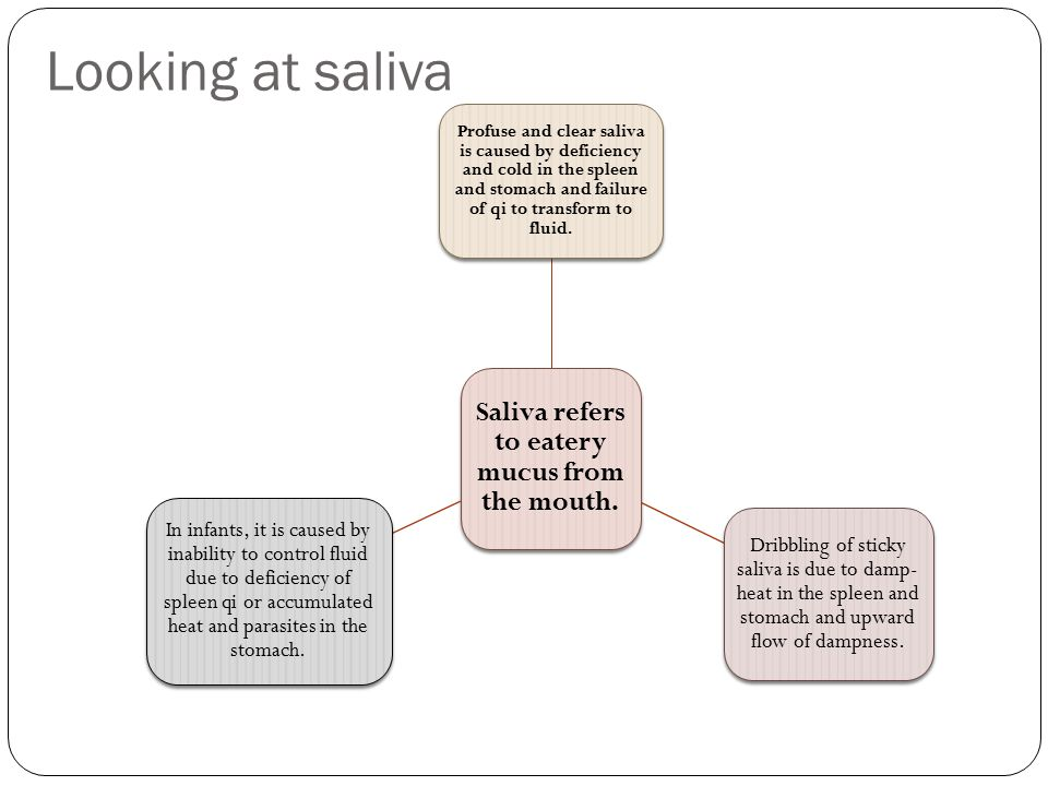 Saliva refers to eatery mucus from the mouth.