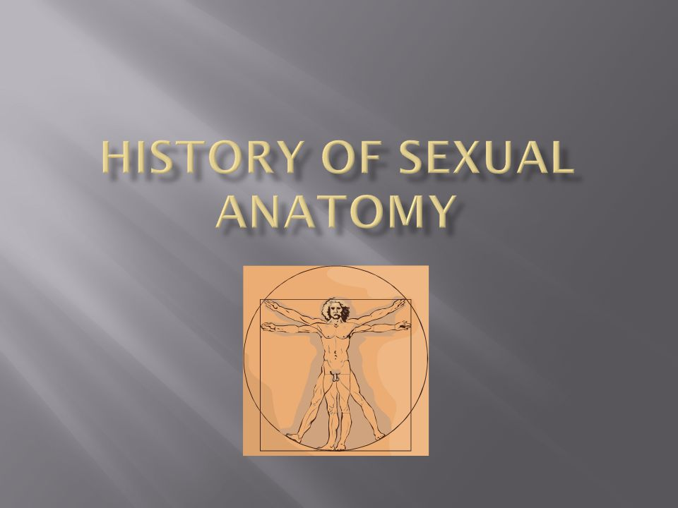 History of Sexual Anatomy
