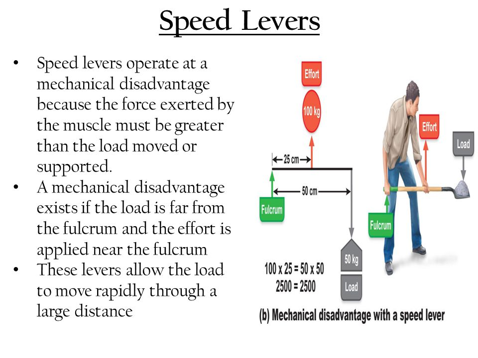 Speed Levers