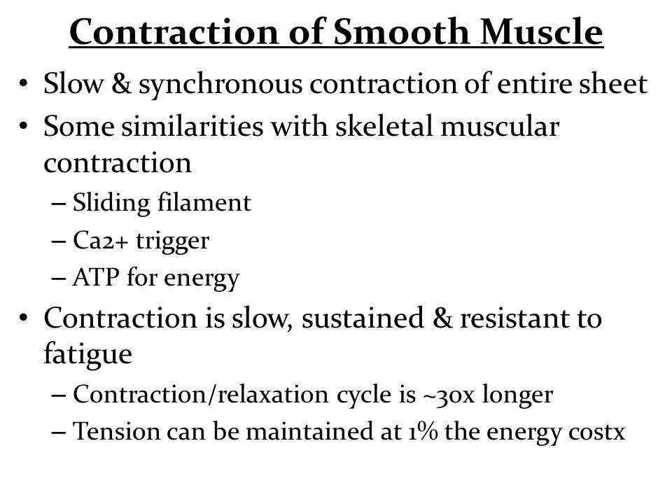 Contraction of Smooth Muscle